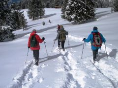 Sneeuwschoenwandelen Tirol