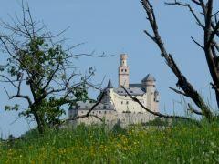 De imposante witte Marksburg, gelegen aan de Rijn