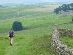 Hadrians Wall vlakbij Housesteads