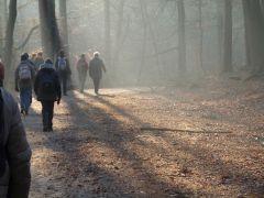 Wandelen in de Achterhoek met oud en nieuw: Grote veld