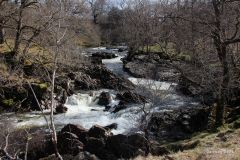 Wandelen over de west-highland-way: River Falloch